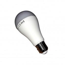 Ampoule led 15W 1250 lumens E27