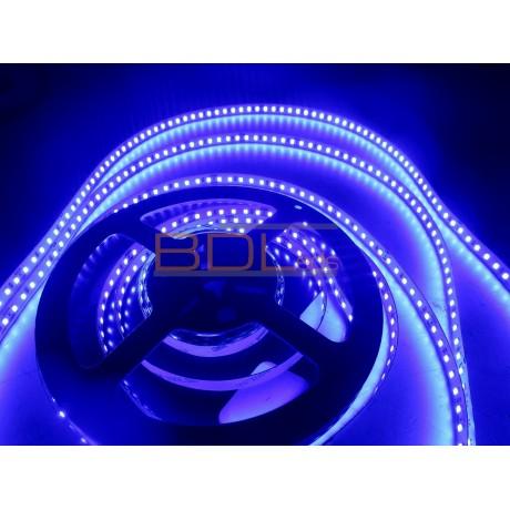 Ruban 120led/m 2835 bleu 660 nm 24V