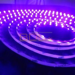 Spectre ruban LED 2835 5 mm 24V UV 395 nm