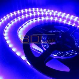 Ruban led 2835 bleu 460nm 24V 5 mm