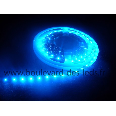 Ruban led bleu non waterproof