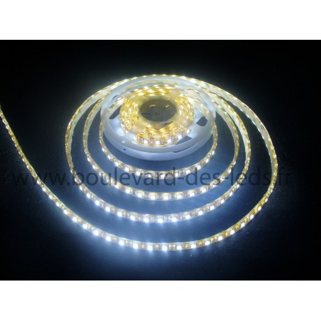 Strip led blanc 300 led smd 5050