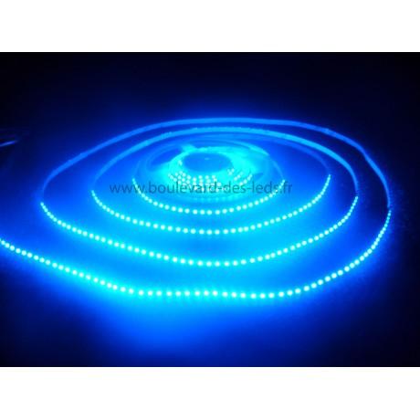 Ruban led bleu 600 leds 3528
