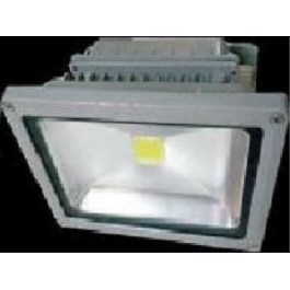 projecteur led 30W daylight