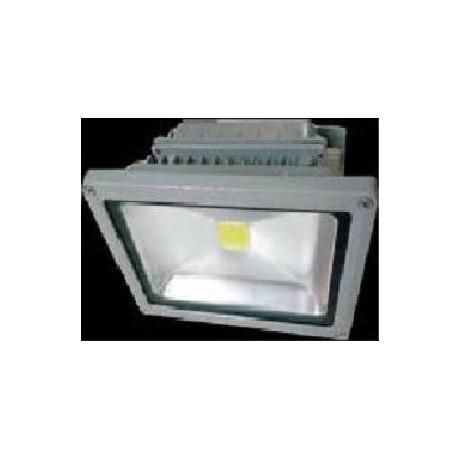 projecteur led 30W daylight
