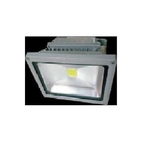 Projecteur LED 30W blanc chaud IP65