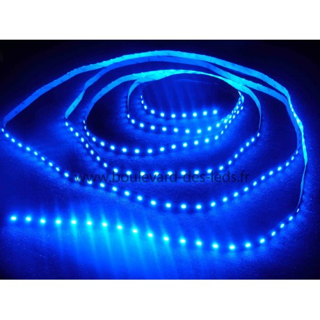 Ruban led bleu 60led/m smd 5050