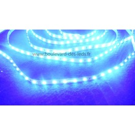 Ruban led bleu 2835 extra brillant