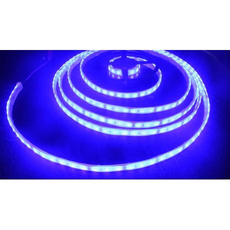 Bandeau led bleu étanche 2835