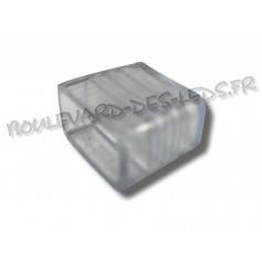 Bouchon ruban led 220V