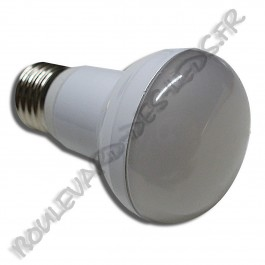Ampoule led E27 2835